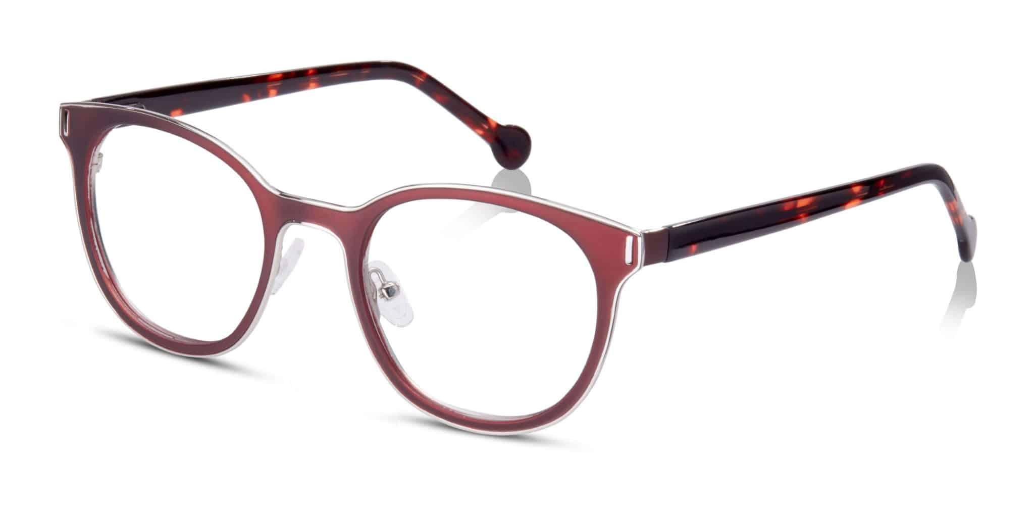 משקפיים מעטפת כסף